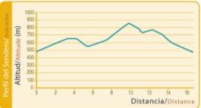 grafico-altitud Sendero del Collado de la Madera de Ricote-PR-MU-47