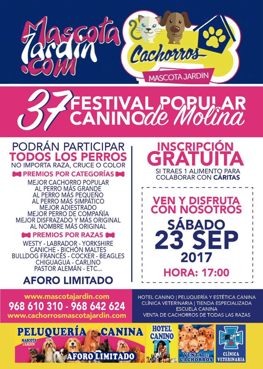 festival canino popular de molina 2017-mascota jardin