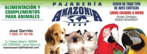 Amazonia 2008
