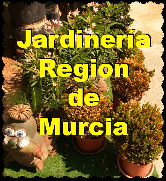 Jardinería en La Región de Murcia