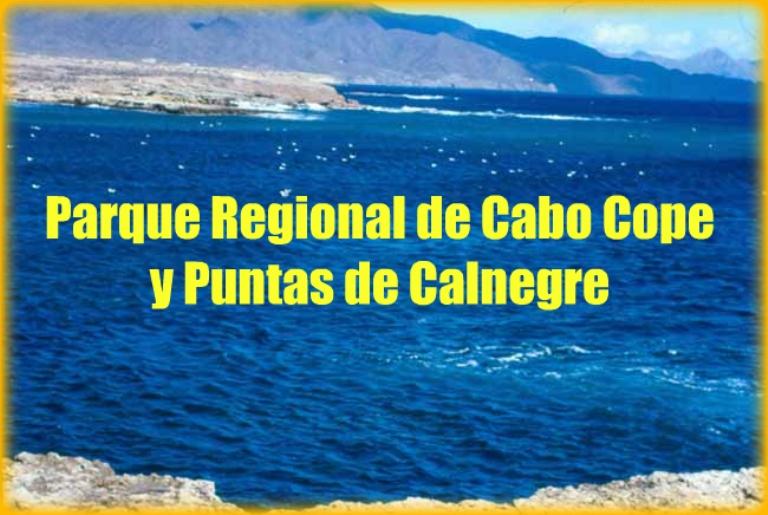 Playa Puntas de Calnegre en Lorca