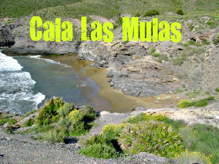Cala de las Mulas en Cartagena