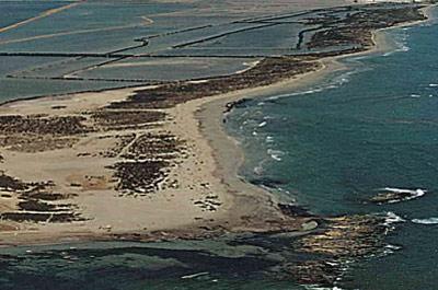 Playa Punta de Algas en San Pedro del Pinatar