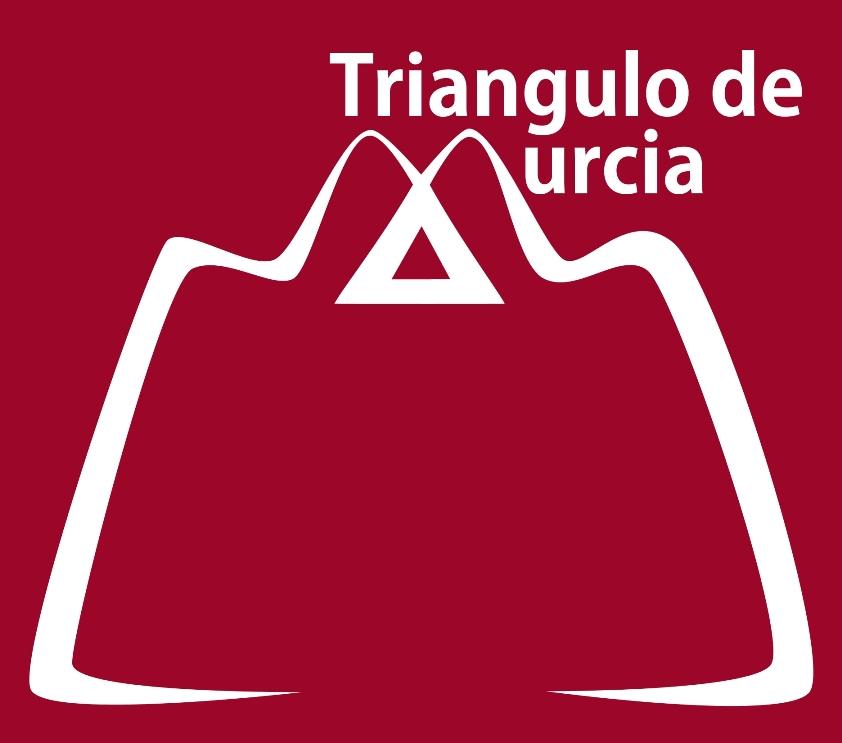 Asociación de Comerciantes El Triángulo de Murcia