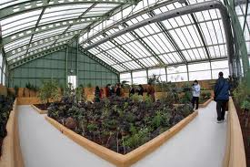 Parque del jardín botánico