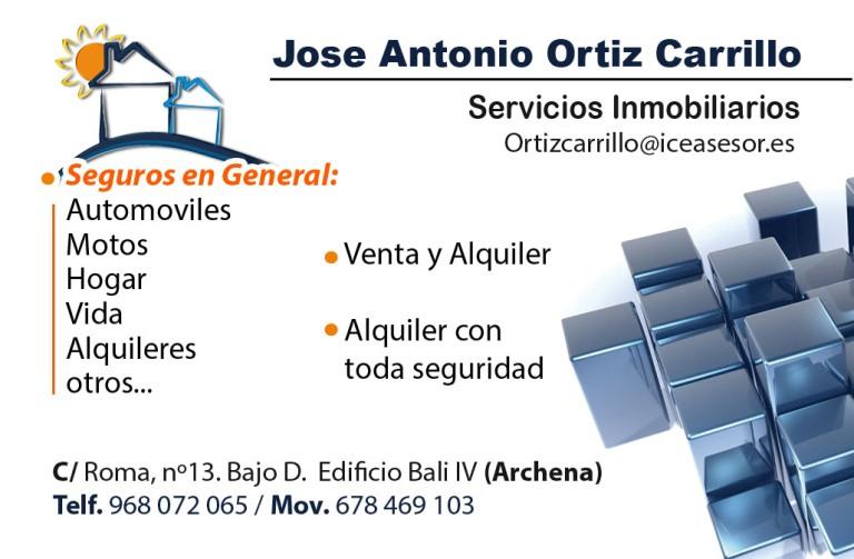 Servicios Inmobiliarios Ortiz Carrillo