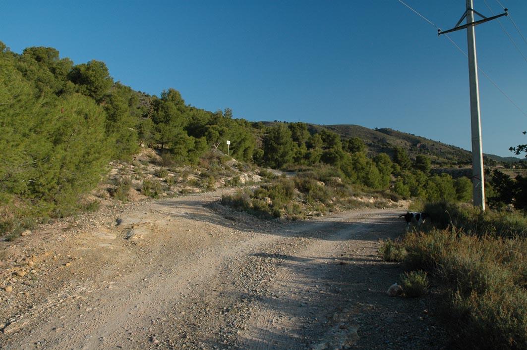 Senda de fuente alta de Sierra Espuña