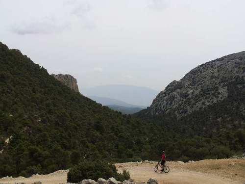 Sendero de La Umbría del Bosque de Sierra Espuña