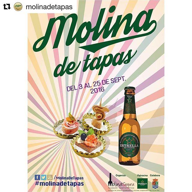 IX Ruta de la Tapa Molina 2016