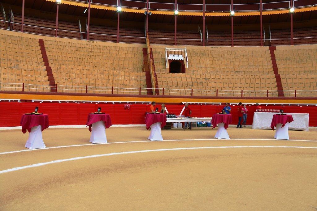 Presentación cartel Plaza de toros de Cieza por Antonio Soler