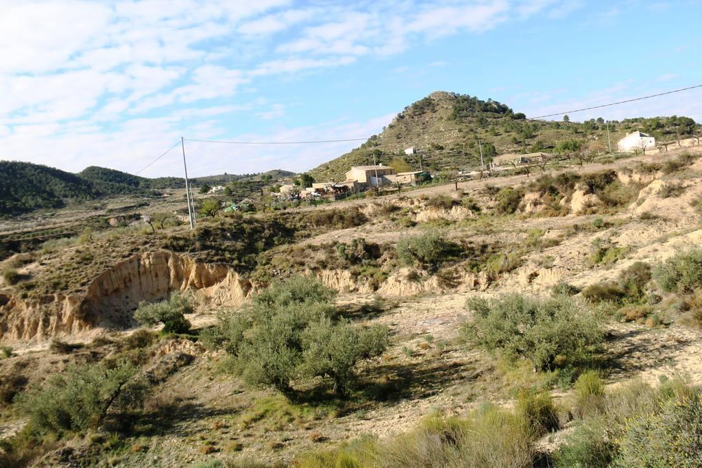 Paisajes Casa Rural El Escorial en Ricote