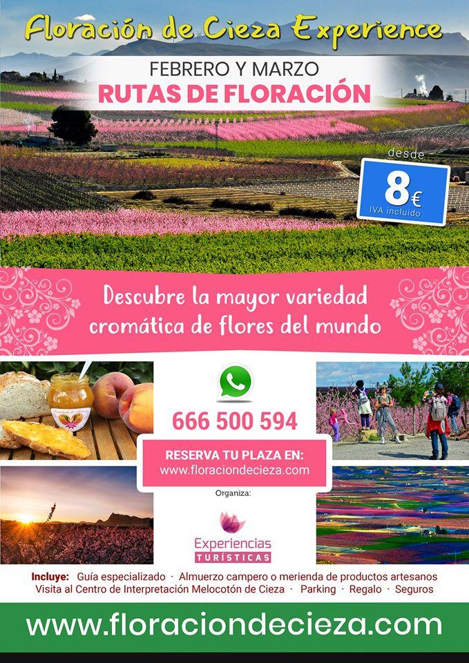 floracion-cieza-1.jpg
