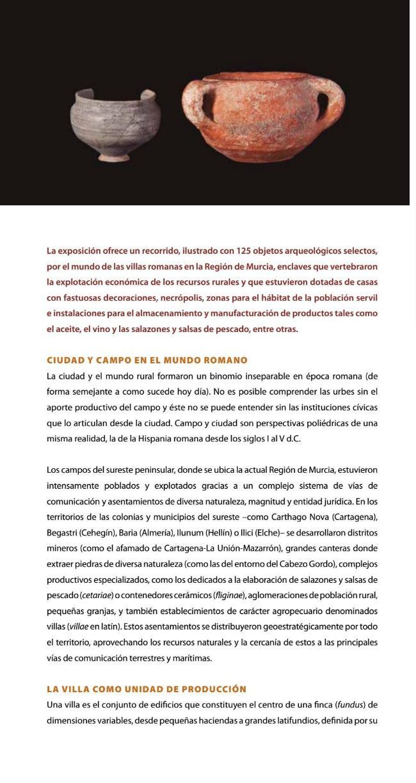 exposicion-VILLAE-museo-arqueologico-murcia-04.jpg