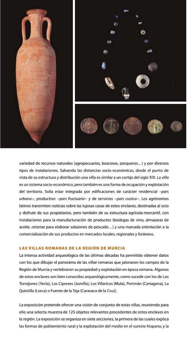 exposicion-VILLAE-museo-arqueologico-murcia-05.jpg