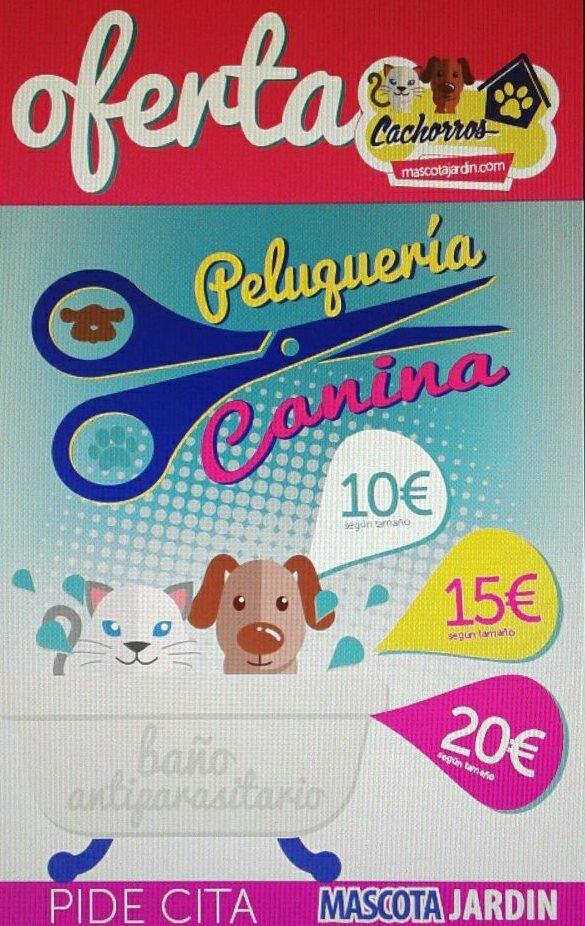 Oferta Cachorros Peluquería Canina
