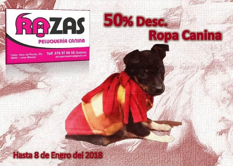 Hasta 50$ de descuento en Ropa Canina en Peluquería Razas