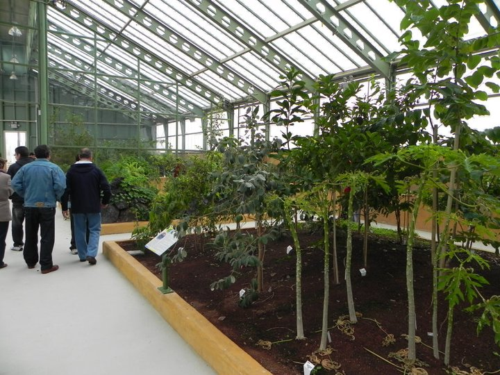 Parque del jard n bot nico la gu a w la gu a for Jardin botanico albacete
